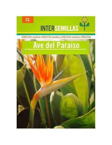 Semillas de Ave del Paraíso INTERSEMILLAS - 1