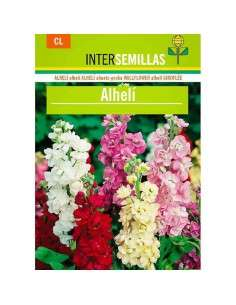 Semillas de Alhelí INTERSEMILLAS - 1