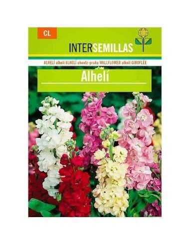 Semillas de Alhelí INTERSEMILLAS - 1