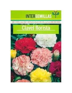 Clavel Florista