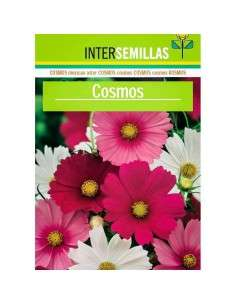 Semillas de Cosmos INTERSEMILLAS - 1