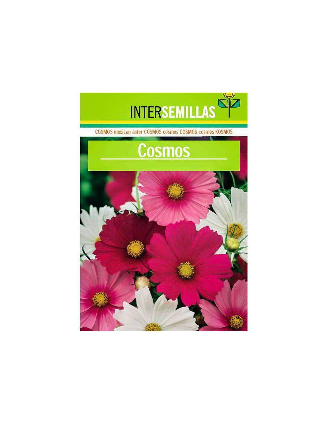 venta de semillas de flores al mejor precio en cocopot - cocopot