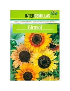 Semillas de Girasol Helianthus Annus INTERSEMILLAS - 1