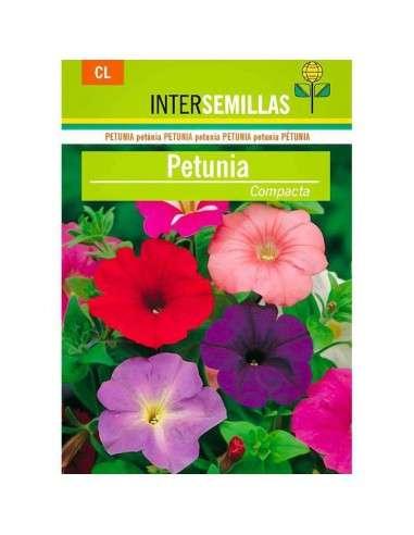 Semillas de Petunia Compacta INTERSEMILLAS - 1