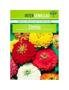 Semillas de Zinnia INTERSEMILLAS - 1
