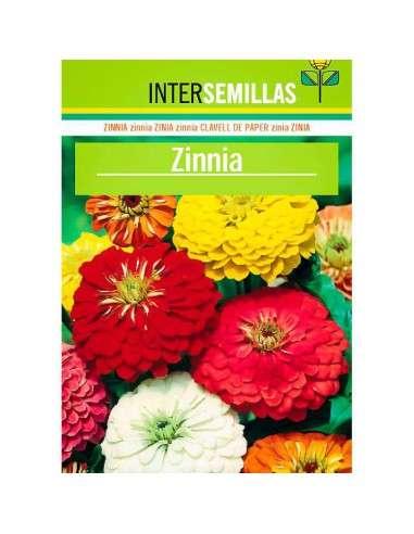 Semillas de Zinnia INTERSEMILLAS - 1