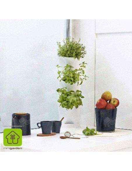 Minigarden Corner Blanco Jardín vertical MiniGarden - 2