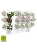 Jardín vertical Minigarden Corner Blanco