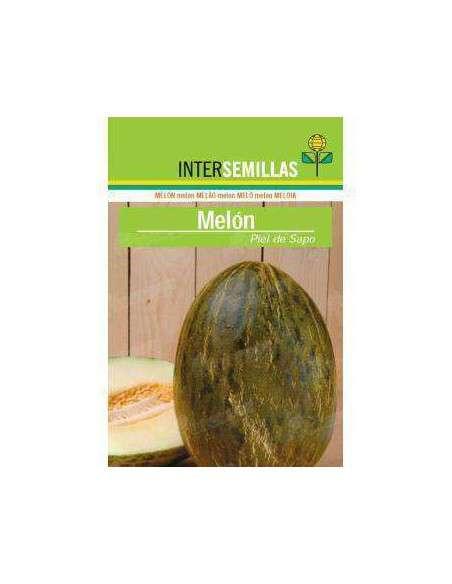 Semillas de Melón Piel de Sapo 10gr. INTERSEMILLAS - 2