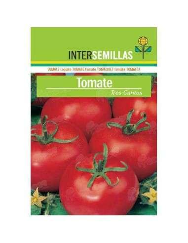 Semillas Tomate Tres Cantos 4gr. INTERSEMILLAS - 1