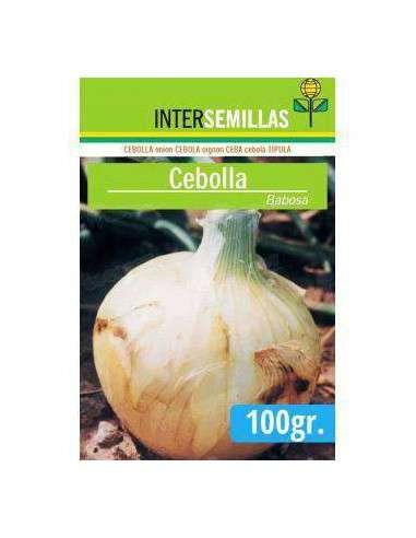 Semillas de Cebolla Babosa 100gr. INTERSEMILLAS - 1