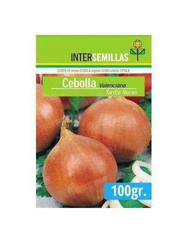 Semillas de Cebolla Valenciana Tardía Recas 100gr. INTERSEMILLAS - 1