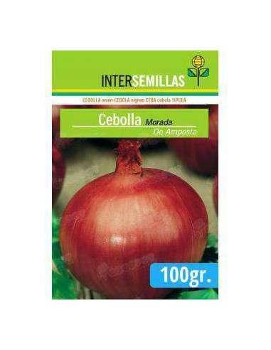 Semillas de Cebolla Morada de Amposta 100gr. INTERSEMILLAS - 1