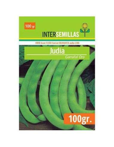 Semillas de Judía Garrafal Oro 100g. INTERSEMILLAS - 1