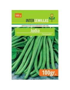 Semillas de Judía Contender 100g. INTERSEMILLAS - 1