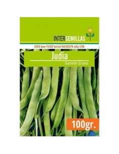 Semillas Judía Garrafal Enana 100g.