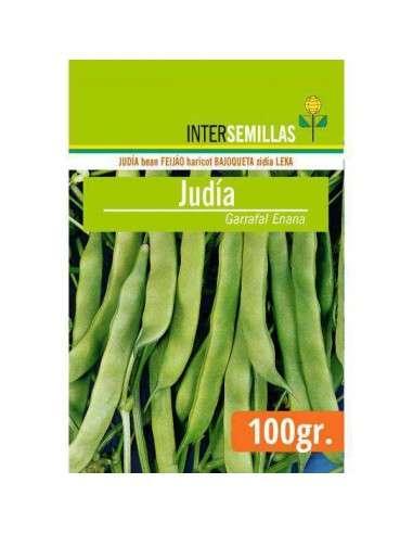 Semillas de Judía Garrafal Enana 100g. INTERSEMILLAS - 1