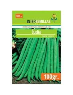 Semillas de Judía Verde Gator Green 100g. INTERSEMILLAS - 1