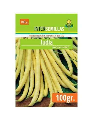 Semillas Judía Amarilla Ronquencourt 100g.