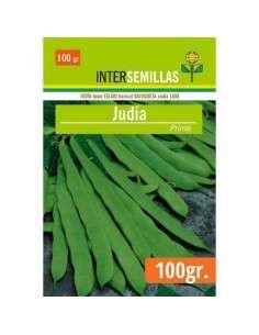 Semillas de Judía Plana Primo 100g.
