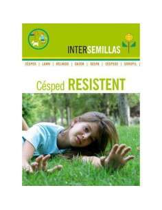 Semillas de Césped Resistent 1Kg. INTERSEMILLAS - 1