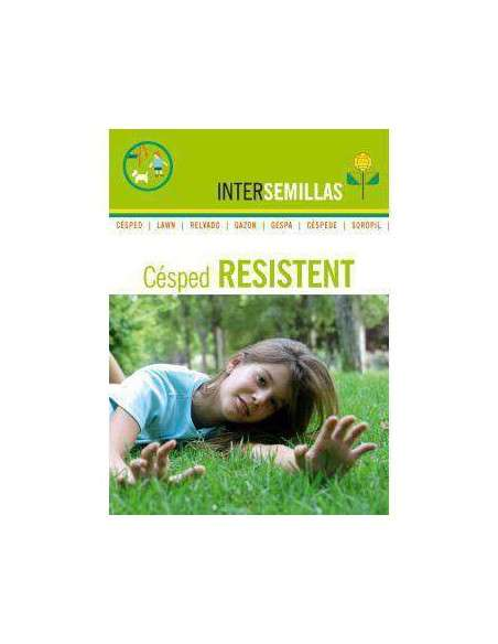 Semillas de Césped Resistent 1Kg. INTERSEMILLAS - 2