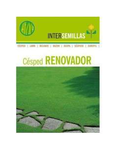 Semillas de Césped Renovador 1Kg. INTERSEMILLAS - 1