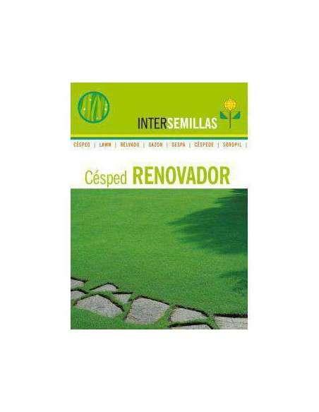 Semillas de Césped Renovador 1Kg. INTERSEMILLAS - 2
