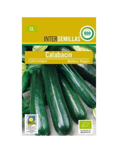 Semillas de Calabacín Belleza Negra Ecológicas 5gr. INTERSEMILLAS - 1