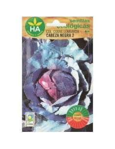 Semillas de Col Lombarda Cabeza negra 2 Ecológicas