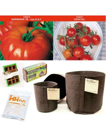 Tomate Kit COCOPOT - 1