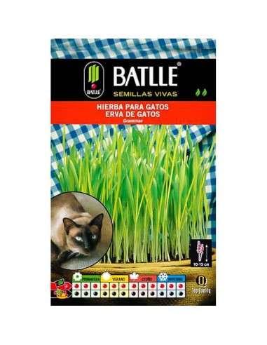 Semillas de Hierba para Gatos Semillas Batlle - 1