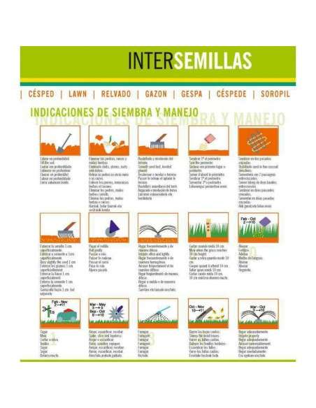 Semillas de Césped Mediterráneo con Grama 5Kg. INTERSEMILLAS - 2