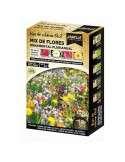 Mix Flores Ornamental Plurianual
