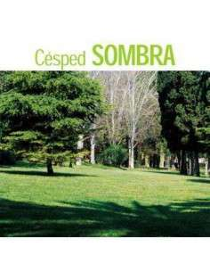 Semillas de Césped Sombra 5Kg. INTERSEMILLAS - 1