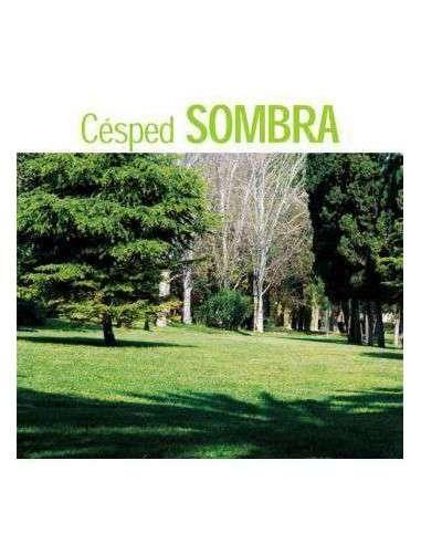 Semillas de Césped Sombra 5Kg. INTERSEMILLAS - 1