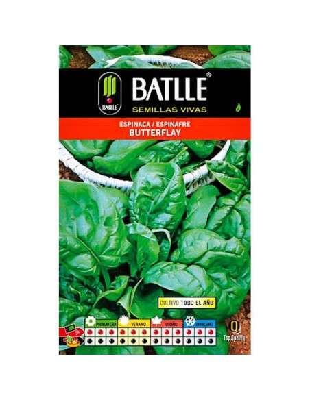 Semillas de Espinaca Butterflay 100g. Semillas Batlle - 1