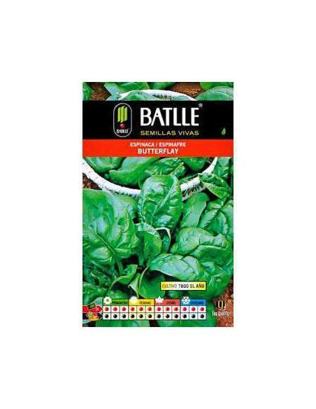 Semillas de Espinaca Butterflay 100g. Semillas Batlle - 2