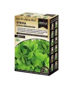 Kit Cultivo Stevia Rebaudiana