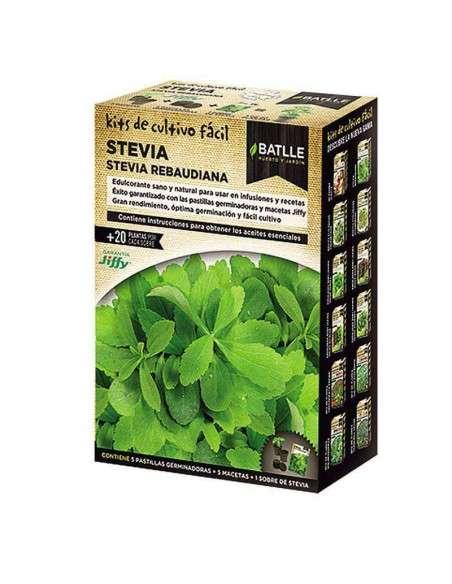 Stevia Kit de Cultivo Fácil Semillas Batlle - 1