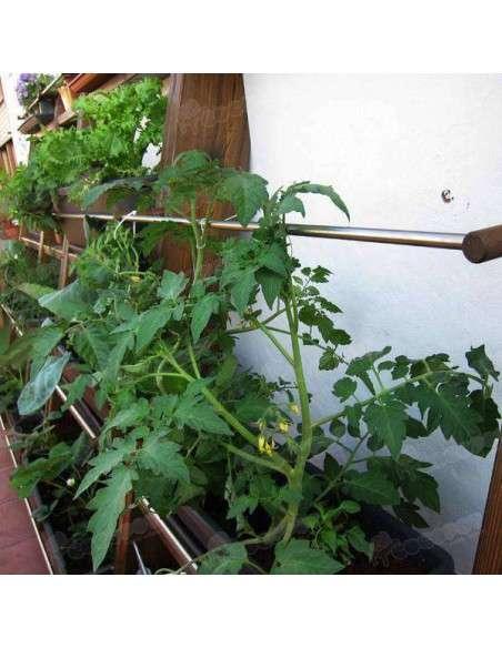 Jardín vertical Zurnek 70cm ZURNEK - 21