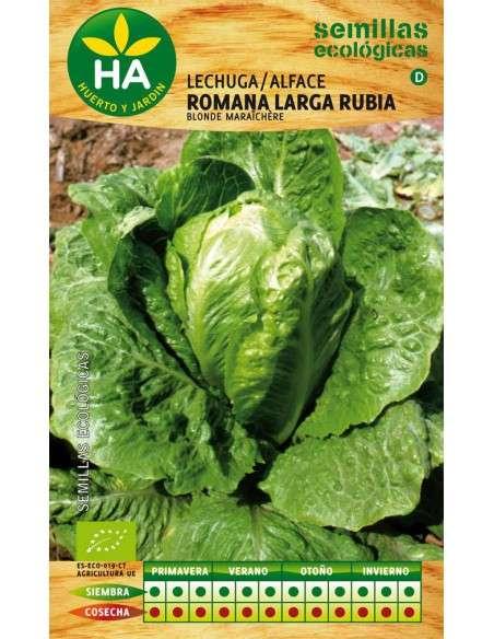 Semillas de Lechuga Romana Ecológicas Semillas Batlle - 1
