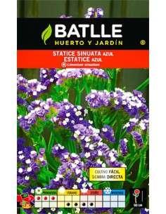 Semillas de Statice Azul Semillas Batlle - 1