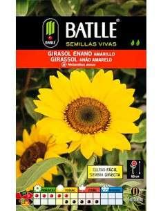 Semillas de Girasol enano amarillo Semillas Batlle - 1