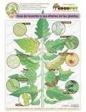 Bacillus Thuringiensis Biológico Sobres