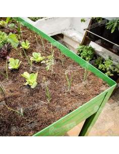 Kit Sustrato mesa cultivo 150L. Cultiva en casa - 10