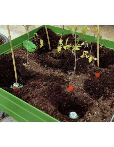 KIT Tutores mesa de cultivo Cultiva en casa - 26