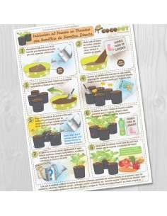 Lámina Guía Huerto en Macetas, siembra directa COCOPOT - 1