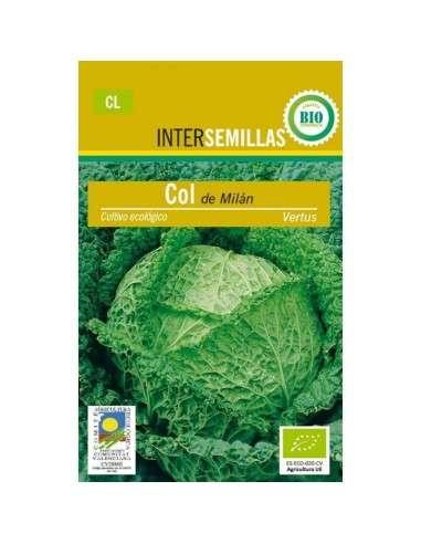 Semillas de Col Milán Vertus Ecológicas 100gr. INTERSEMILLAS - 1