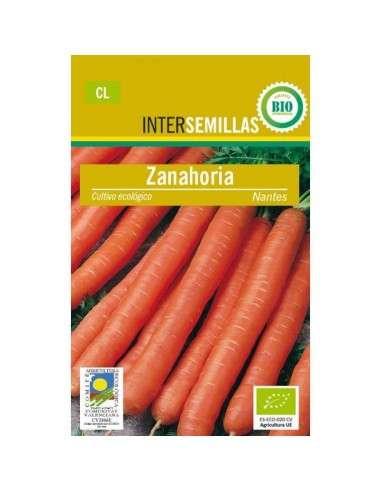 Semillas de Zanahoria Nantes 100gr. Eco INTERSEMILLAS - 1
